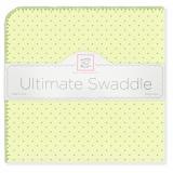 Фланелевая пеленка SwaddleDesigns Kiwi w